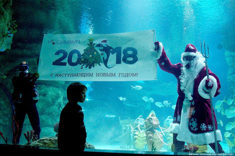 ВДНХ. Москвариум. Дед Мороз. 13.12.17.06..jpg