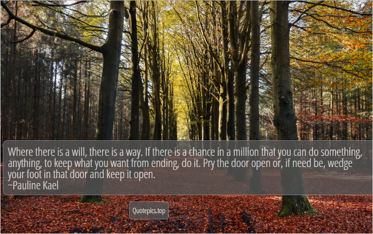 Where there is a will, there is a way. If there is a chance in a million that you can do something, anything, to keep what you want from ending, do it. Pry the door open or, if need be, wedge your foot in that door and keep it open. ~Pauline Kael