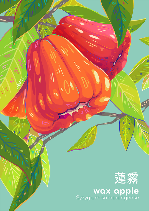 Joyful Illustrations by Aster Hung