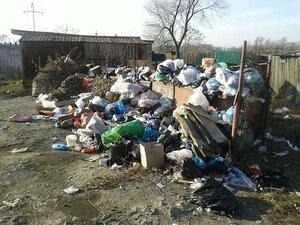 В Приморье посёлок Тавричанка завален мусором, но местная управляющая компания бездействует