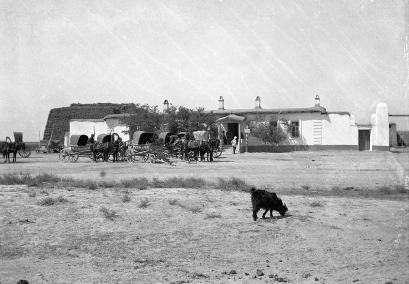 Окрестности Ташкента. Тарантас, стоящий перед фермой