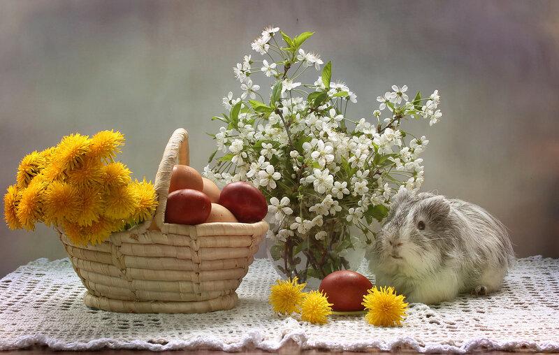 Вместо пасхального зайчика! :))