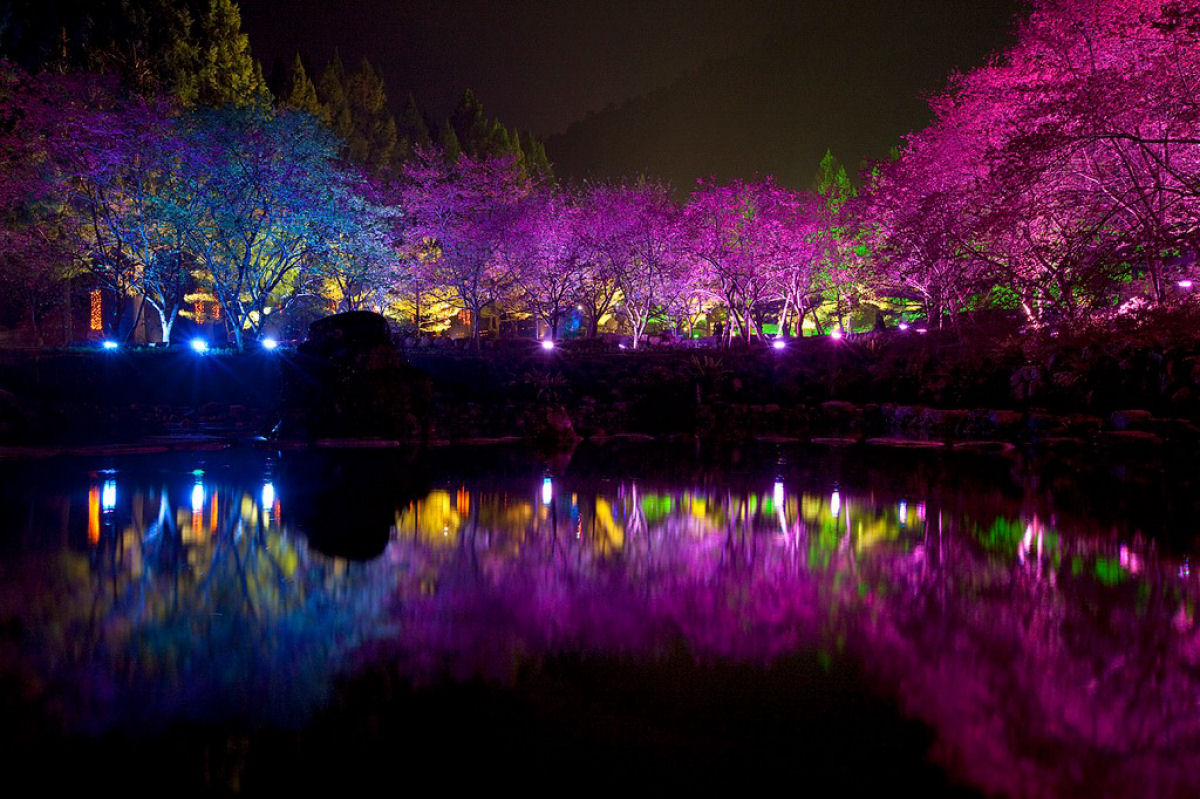 Праздник цветения сакуры на Тайване. Прекрасная деревня Формосан 0 1607a3 a39ce088 orig