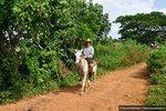 29-(003)-Vinales-Cuba-2014-10-07.JPG