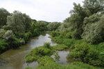 Река Таруса