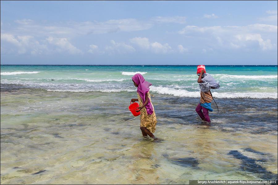 16. Очередной отлив и снова женщины массово высыпают на берег