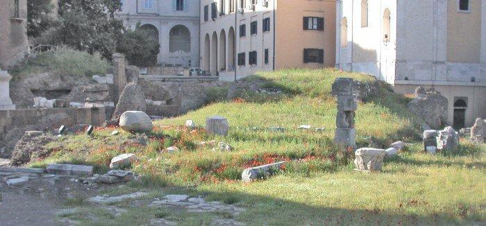 8. Фетиалы В Риме был специализированное учреждение священников, известных как фетиалы, единственной