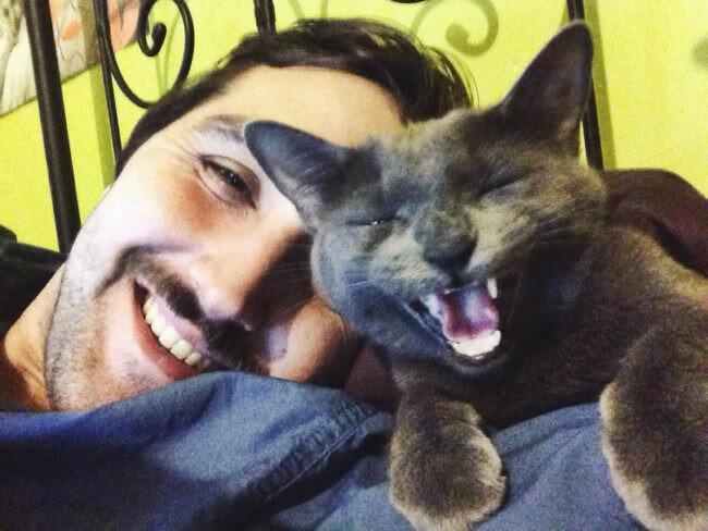Кот радуется вместе с хозяином.