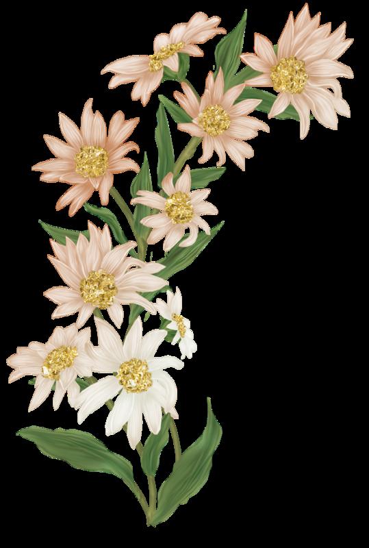 TP_FlowerSprig_01b.png