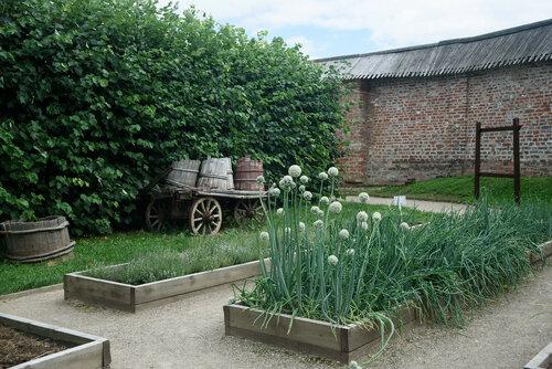 Пасмурный день в монастырском огороде