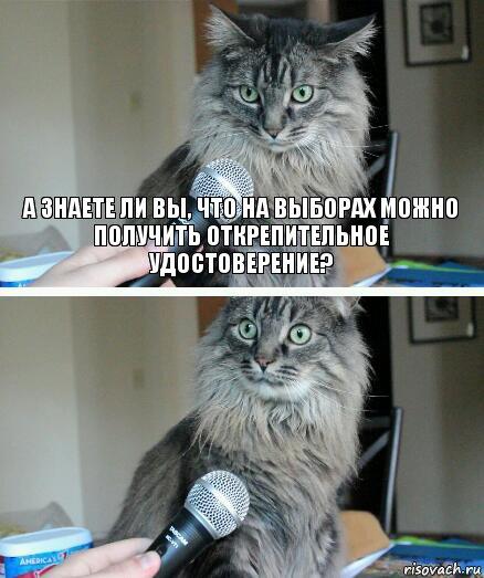 https://img-fotki.yandex.ru/get/51809/7857920.4/0_a334e_56c34d3f_orig.jpg