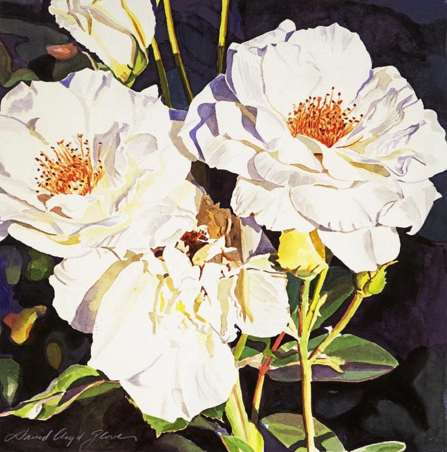 roses-blanc-david-lloyd-glover.jpg