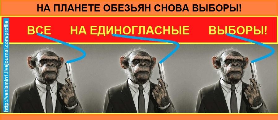 Выборы на планете обезьян