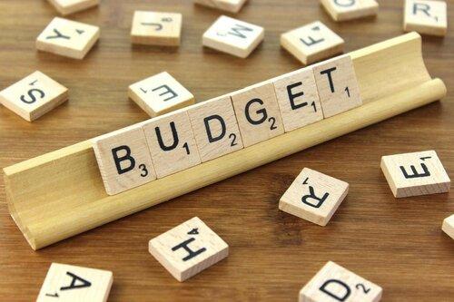 Доходы и расходы молдавского бюджета сокращены на 2 млрд. леев