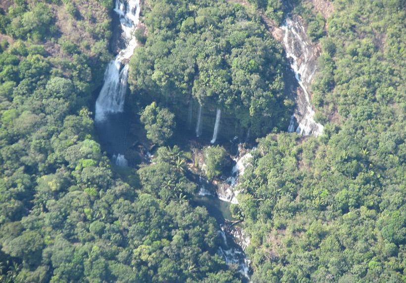 Горная область Макарена считается учеными мира «семенем биоразнообразия». Она существует со времен о