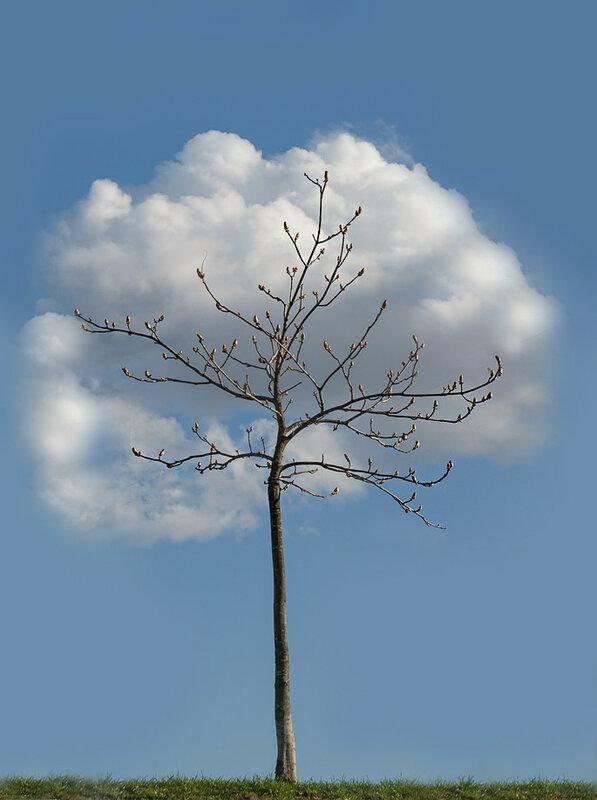облачный покров