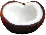 MRD_SeaMemories_coconut.png