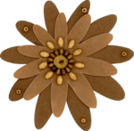 sd_woodland-winter-flower3.png