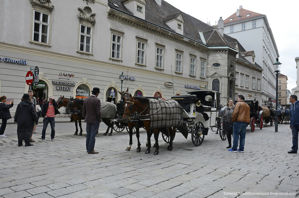 Вена. Штефанплац или площадь Стефана. Stephansplatz