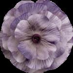 kimla_always_flower5.png