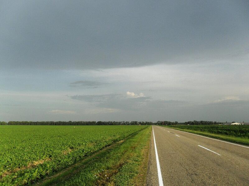 В дороге, летним утром