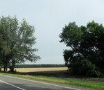 Дорога в Бриньковскую, лето 2012