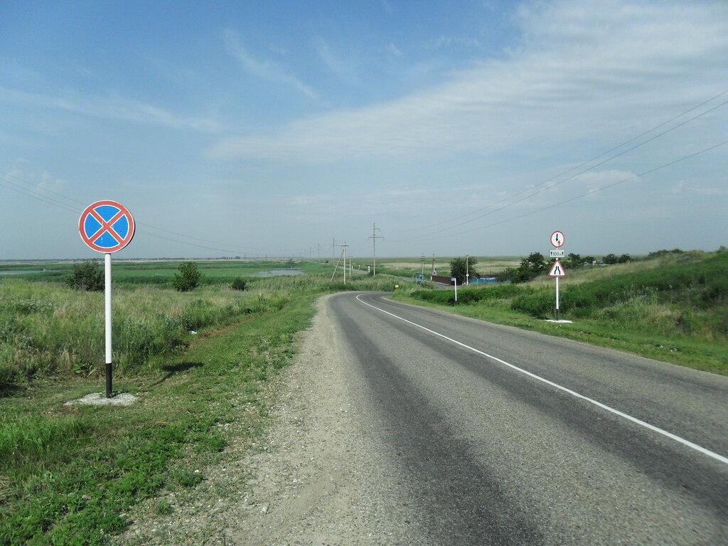 В дороге, июньским утром