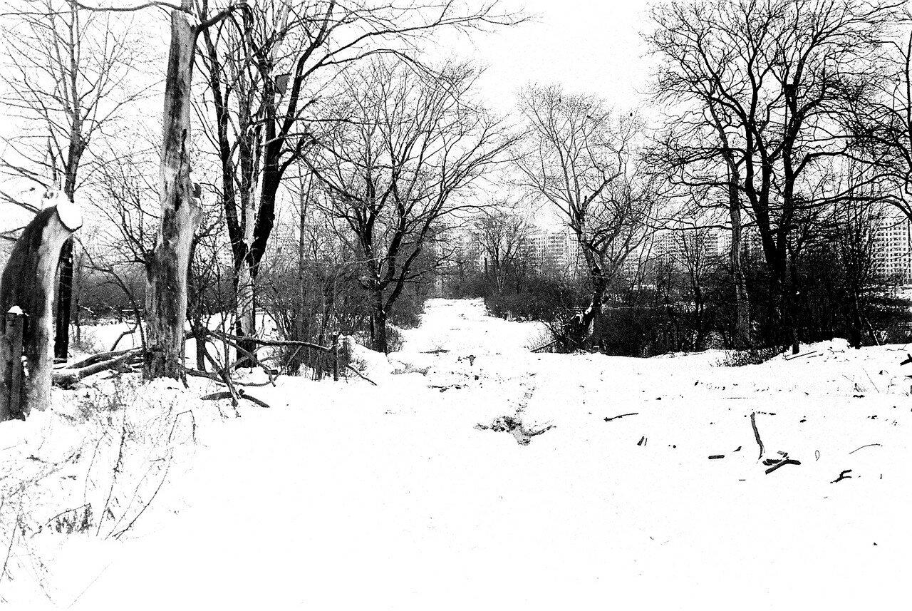 1981. Улица Нижняя, вид со стороны парка. Домов уже нет, остались только деревья и кусты, росшие еще недавно вдоль заборов. Вдали виднеются дома по улице Новинки