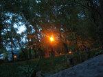 Яркий свет фонаря :)))
