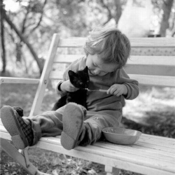 Люди и животные.