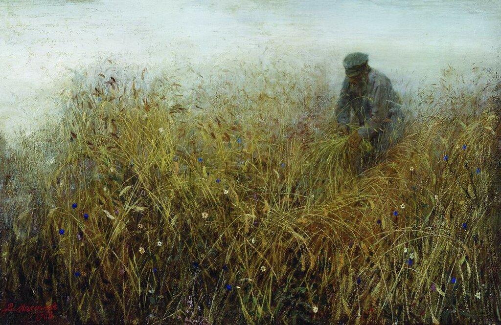Залом ржи. 1903
