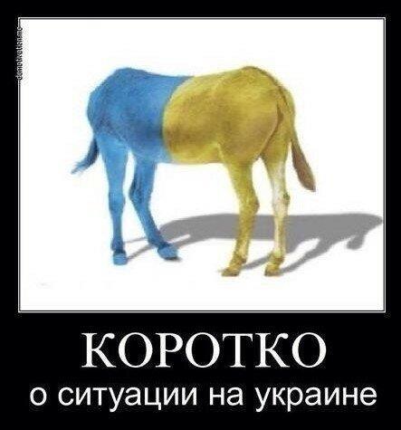 Хроники триффидов: Тотальная пропаганда - последний козырь проигравшего Киева