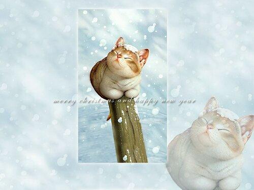 коты и другие звери Макото Шинкаи