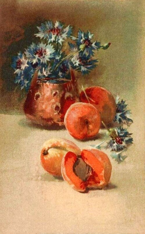 К. Кляйн. ВАСИЛЬКИ и абрикосы