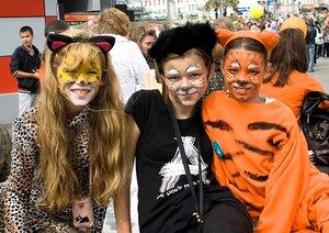 27 сентября во Владивостоке пройдет карнавальное шествие «День тигра»