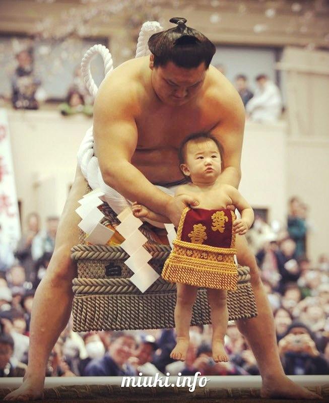 картинки сумо каратэ безусловная разница ощущениях