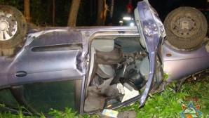 Под Гомелем Renault Scenic врезался в дерево 2 погибли