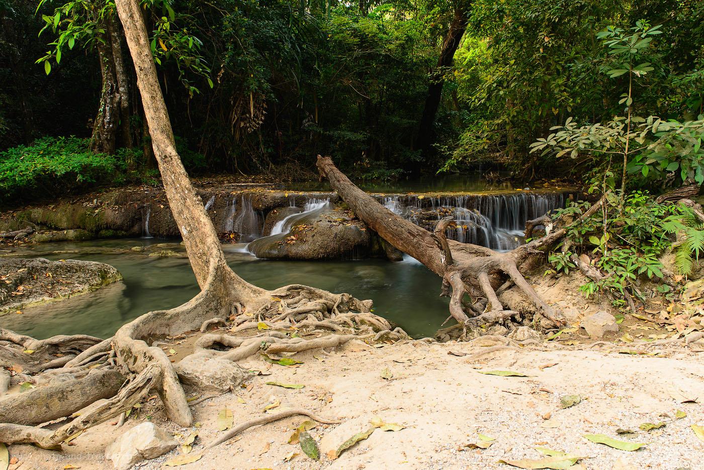 Фотография 7. Отдых в Таиланде. Поездка на экскурсию в национальный парк Эраван. В темном тайском лесу (50, 24, 10.0, выдержка 1,3 секунды)
