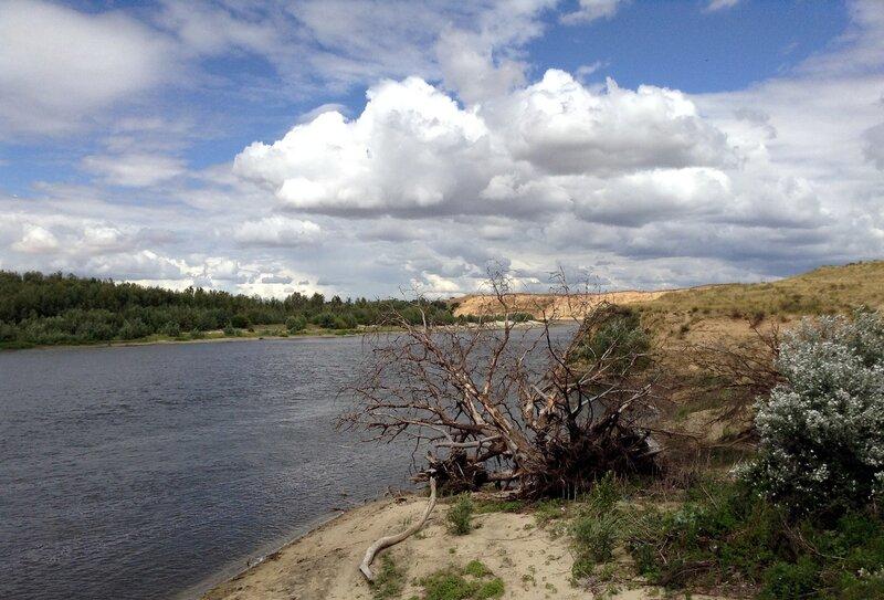 Волгоградская область, река Дон