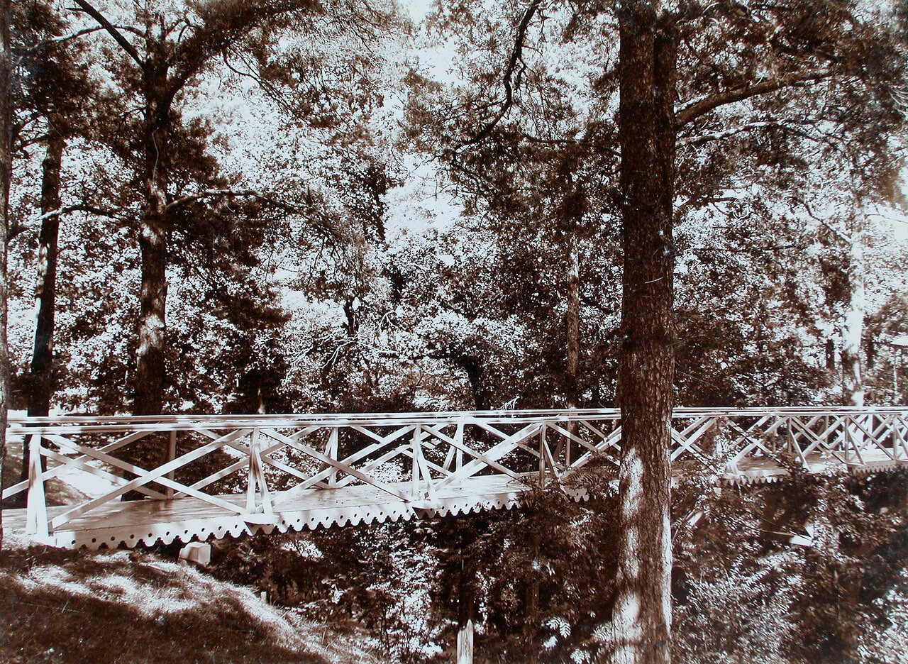 28. Вид моста на соснах в парке