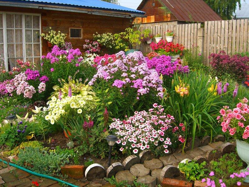 Хороши весной в саду цветочки переделанная