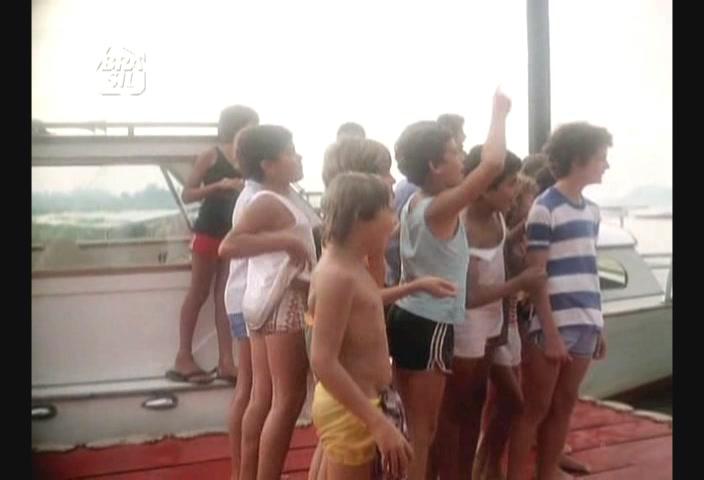 1984 in Brazilian television