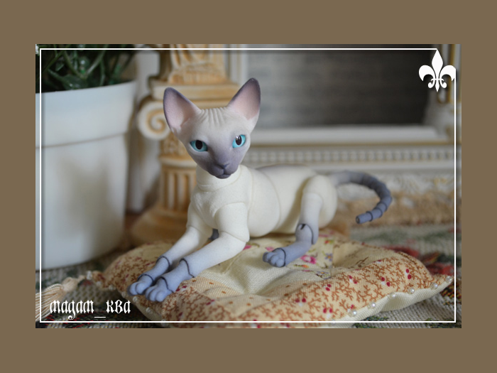 Кукольный мир Мадам Ква