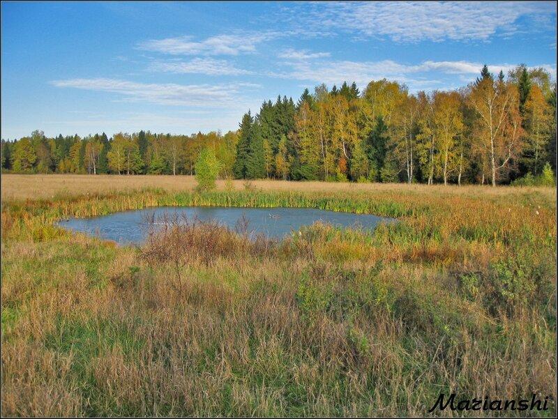 Октябрь в Подмосковье. Озерцо в поле