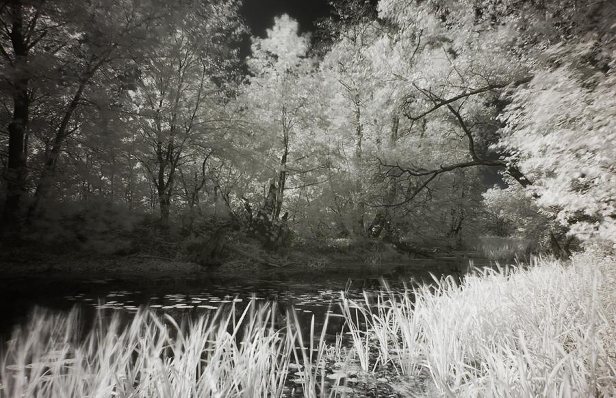 гуф в это знакомое болото