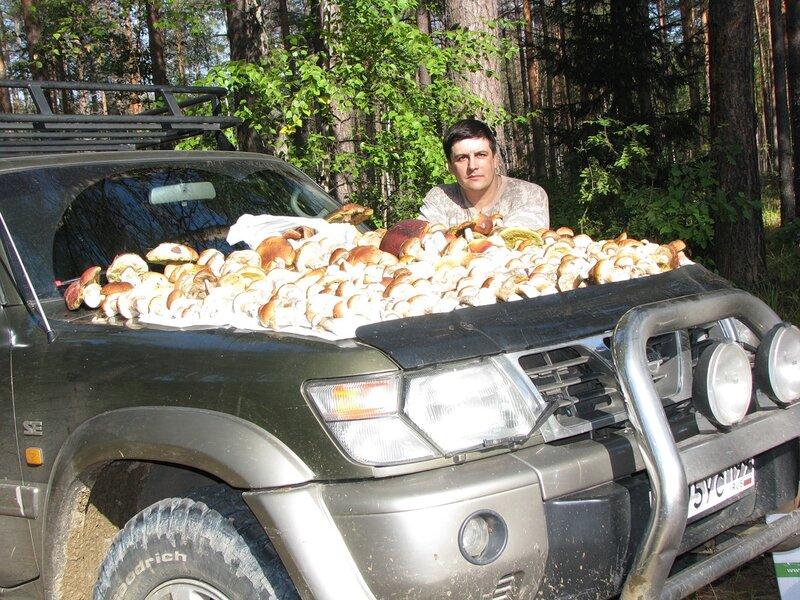 Михаил - Сбор грибов, осень 2010 года