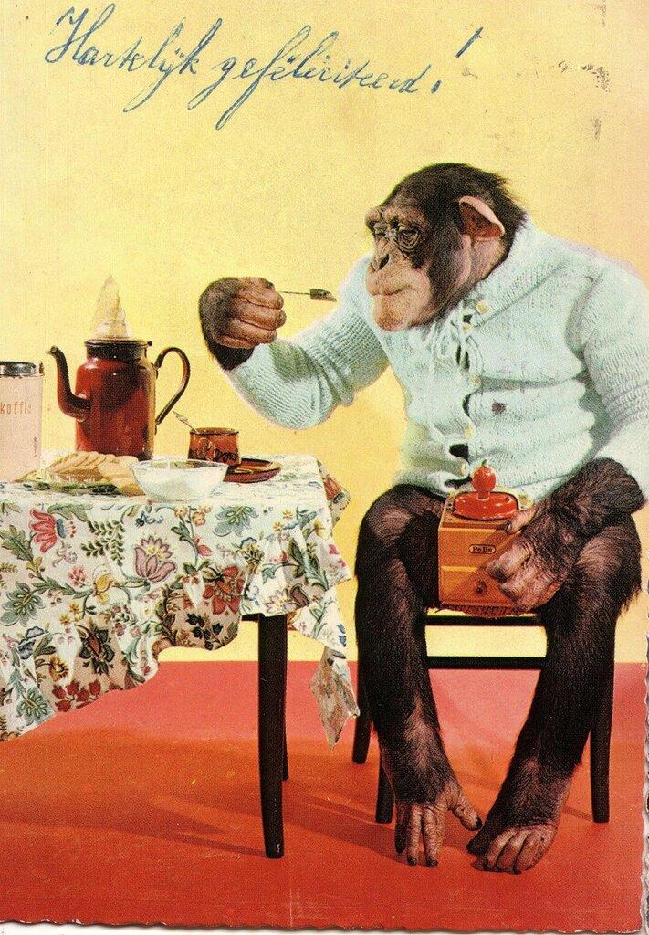 Картинки сказочник, открытки с обезьянками доброе утро