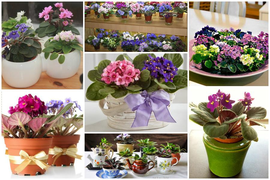 Схемы цветов для вышивки на вязаных изделиях