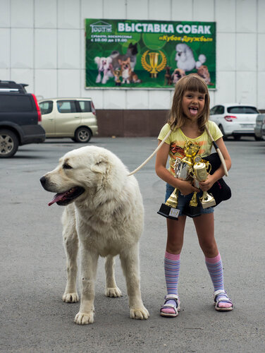 http://img-fotki.yandex.ru/get/5203/1773011.37/0_a8971_c98cc908_L.jpg