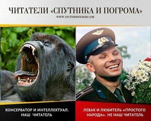 Читаем «Спутник и Погром»